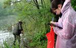 Что нужно знать о профессии эколог?