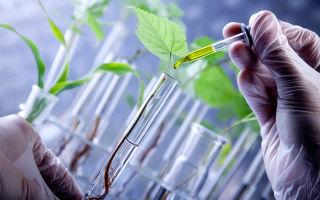 Что за профессия медицинская биохимия?