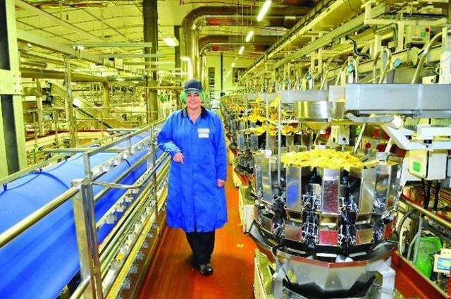Технолог пищевой промышленности – где учиться?